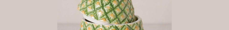 Material Details Troubat Ceramic Pineapple